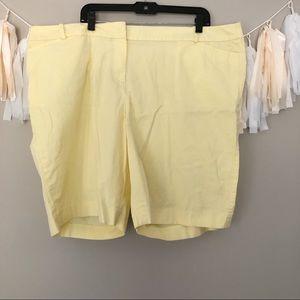 Talbots Plus Size Shorts Pastel Yellow Mid Rise